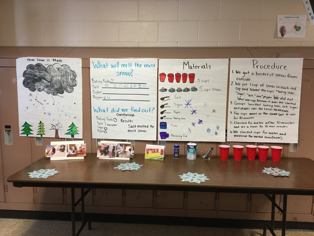 1st Grade's Science Fair display!